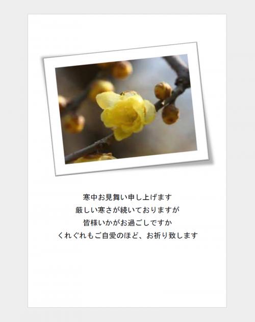 寒中見舞いの葉書テンプレート(Word・ワード)